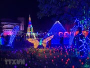Light festival celebrates Hai Duong's recognition of first-tier city