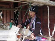 Lu ethnic women preserve brocade weaving