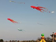Kite flying festival colours up Tuy Hoa sky