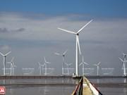 Southern region develops renewable energy