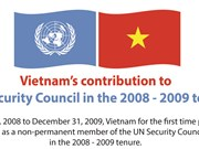 Vietnam actively contributes to UN Security Council