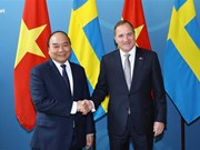 Vietnamese, Swedish PMs hold talks