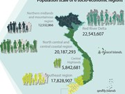Vietnam population hits over 96 million