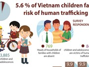 5.6 % of Vietnam children face  risk of human trafficking