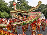 Hanoi's dragon dance wow audiences