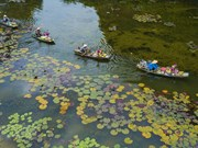 Tam Coc tourism site impressive in Autumn