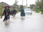 Storm Etau inundates, isolates urban areas in Phu Yen, Dak Lak