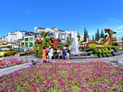 Da Lat, the capital of flower export