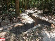 Cu Chi Tunnels on path of becoming world heritage