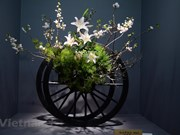 Vietnamese flower arrangements displayed at Japan exhibition