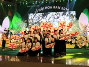 Ban flower festival underway in Dien Bien