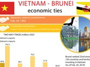 Vietnam - Brunei economic ties