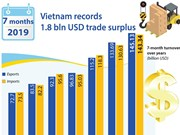 Vietnam records 1.8 bln USD trade surplus in 7 months