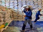 Rice exports see sharp drop due to market difficulty
