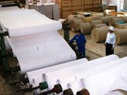 Paper sector's growth slows down