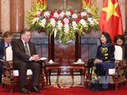Vietnam welcomes projects from Russia: Vice President