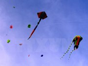 Annual kite fest takes wing in Vung Tau