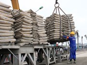 Vietnam cement export estimated at 15 million tonnes