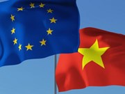 Vietnam, EU hold annual human rights dialogue