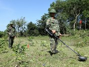 Conference looks to strengthen support for UXO victims