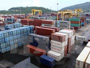Da Nang port unloads seven-millionth tonne of goods