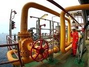 PetroVietnam tops list of 500 lead earners