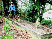 Malaysia: Bones thought from giant humans discovered