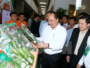PM urges endeavours to turn Vietnam into agricultural powerhouse