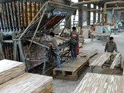 Vietnam's wood processing faces material shortage