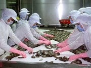 Seafood exports hoped to fetch 7.1 billion USD in 2017