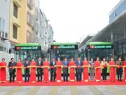 Hanoi officially launches rapid buses