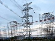 EVN asked to keep key role in national electricity supply