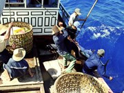 Legislators to keep tabs on fishermen's compensation