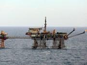 PVEP, Halliburton Landmark cooperate in oil & gas exploration