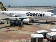 Tourists stranded on Bali as Tigerair flights banned
