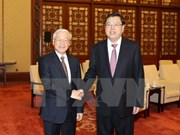 Parliamentary cooperation crucial to Vietnam-China political trust