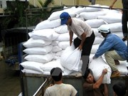 Government allocates rice, medicines to localities