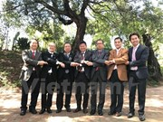 ASEAN council in South Africa to mark bloc's 50th founding anniversary