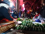 Lunar New Year festival organised at ancient communal house