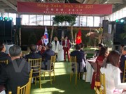 Vietnamese communities in RoK, Belgium celebrate Tet