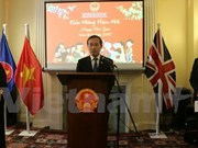 Vietnamese community in UK, Brazil celebrate Tet