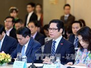 Hanoi calls for investment from Japan