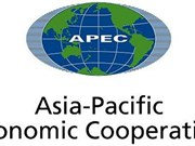 APEC 2017: Vietnam makes positive contributions to APEC