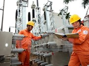 EVN supplies electricity for over 9.2 million customers in the north