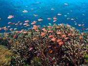 Sea resources serve national socio-economic development