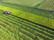 Mekong Delta urges more high-tech farming investment