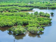 "Ramsar sites - ""Home"" to rare marine species"