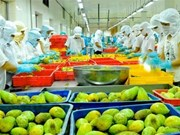 Vietnam targets vegetable, fruit export value at 3 billion USD