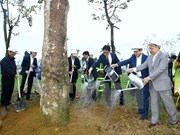 Hanoi launches tree-planting campaign