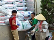 Vietnam uses 11 million tonnes of fertiliser annually